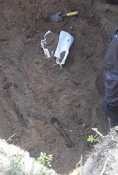 кость в раскопе