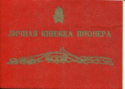обложка_книжки_пионера Славы Долинина