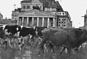 Октябрь 1941. Бегство из Москвы
