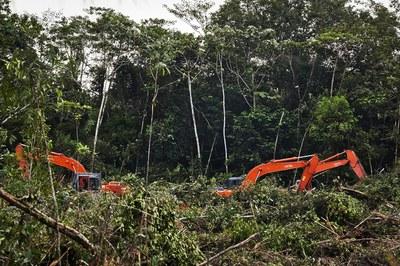 Против отмены экологической экспертизы
