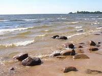 Экологически горячие точки южного берега Финского залива