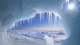 Сибирь и Север в ЕУСПБ