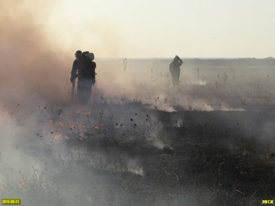 Пожар на Шапсуге все-таки потушили, несмотря на противоправное противодействие правоохранителей