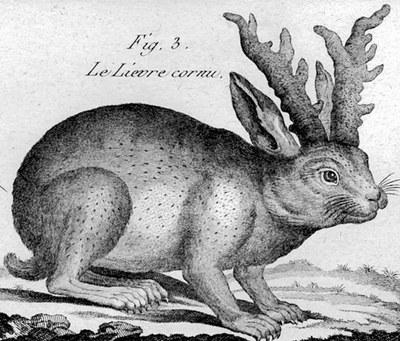 """Ответ Мединскому в рамках """"философии зайца"""""""
