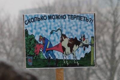 Калининградский митинг в СМИ и ЖЖ