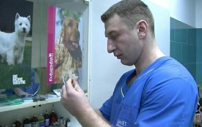 Врача-ветеринара Александра Шпака освободили по УДО