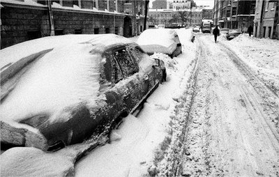 Евгений Водолазкин о бескомпромиссной борьбе со снегом в Петербурге