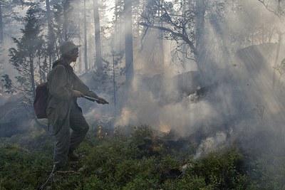 Добровольные лесные пожарные открыли тренировочный сезон