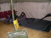 Бездомность как стихийное бедствие?