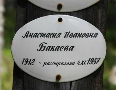 Петербургские адреса расстрелянных в Сандормохе