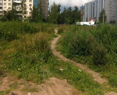 Как Сева Грибов прогулялся по району