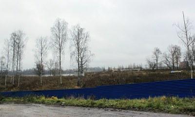 Жители Рыбацкого выйдут митинговать против застройки парка