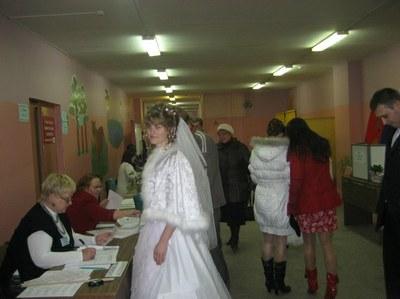 Выборы в Чудовском районе